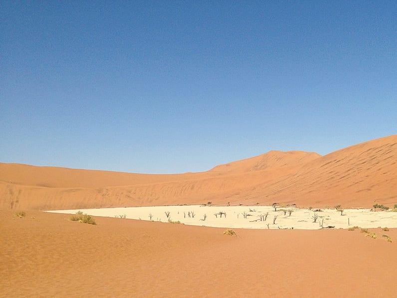pelas areias do kalahari