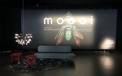 moooi  |  zona tortona  |  milão 2017